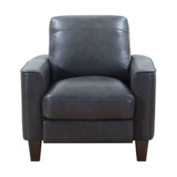 Trieste Chair - Gray