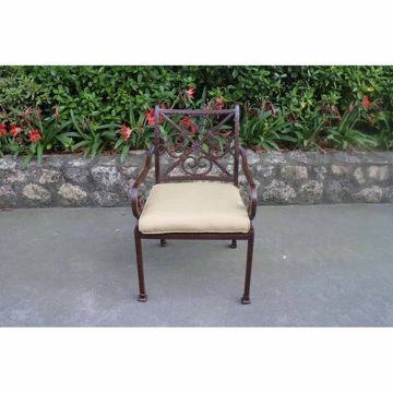 Santa Rosa Arm Chair
