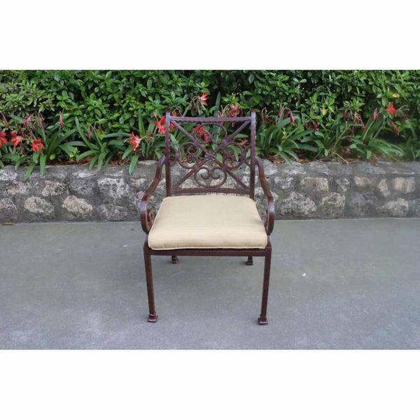 Santa Rosa Arm Chair