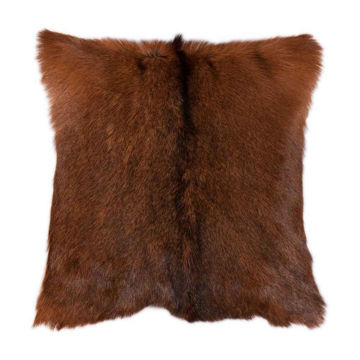 Picture of Axis Design Hide Pillow