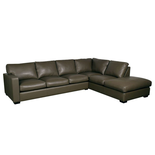 Colebrook 2-Piece Leather Sectional